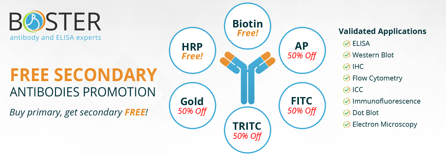 free-secondary-antibodies-promotion