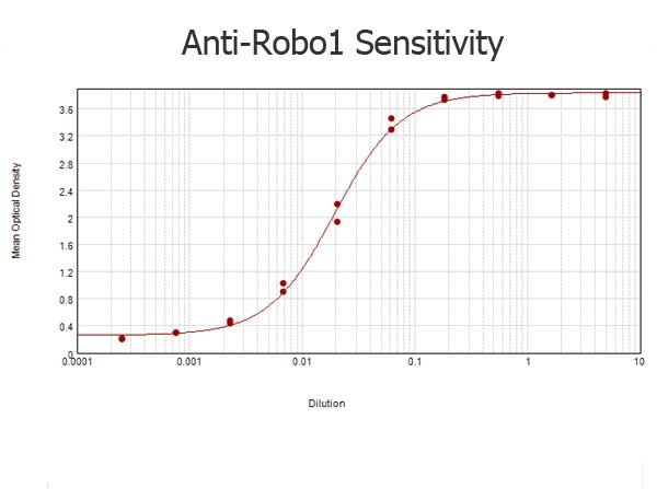 ELISA results of Rabbit anti-ROBO1/DUTT1 Antibody tested against BSA-conjugated peptide of immunizing peptide. Each well was coated in duplicate with 0.1