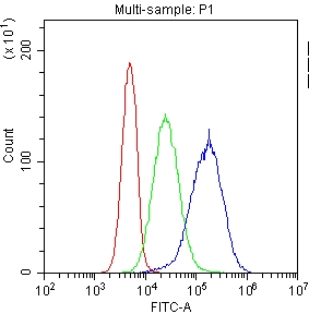 Figure 3. Flow Cytometry analysis of HL-60 cells using anti-ITGA2B antibody (A01102). <br>Overlay histogram showing HL-60 cells stained with A01102 (Blue line).The cells were blocked with 10% normal goat serum. And then incubated with rabbit anti-ITGA2B Antibody (A01102,1μg/1x106 cells) for 30 min at 20°C. DyLight?488 conjugated goat anti-rabbit IgG (BA1127, 5-10μg/1x106 cells) was used as secondary antibody for 30 minutes at 20°C. Isotype control antibody (Green line) was rabbit IgG (1μg/1x106) used under the same conditions. Unlabelled sample (Red line) was also used as a control. <br>