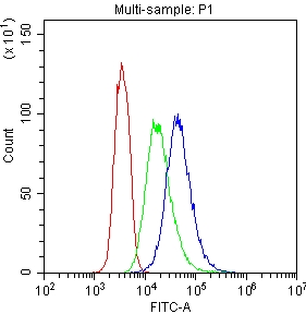 Figure 4. Flow Cytometry analysis of U937 cells using anti-ITGA2B antibody (A01102). <br>Overlay histogram showing U937 cells stained with A01102 (Blue line).The cells were blocked with 10% normal goat serum. And then incubated with rabbit anti-ITGA2B Antibody (A01102,1μg/1x106 cells) for 30 min at 20°C. DyLight?488 conjugated goat anti-rabbit IgG (BA1127, 5-10μg/1x106 cells) was used as secondary antibody for 30 minutes at 20°C. Isotype control antibody (Green line) was rabbit IgG (1μg/1x106) used under the same conditions. Unlabelled sample (Red line) was also used as a control. <br>