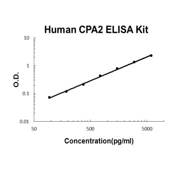 Human CPA2 PicoKine ELISA Kit standard curve