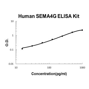Human SEMA4G PicoKine ELISA Kit Standard Curve