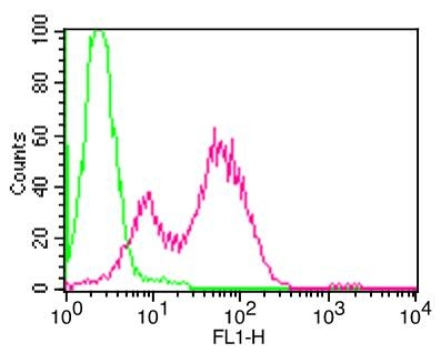 Anti-mCD25 Antibody (Monoclonal, PC61)