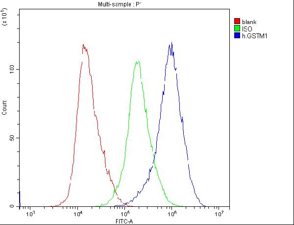 Figure 2. Flow Cytometry analysis of HELA cells using anti-GSTM1 antibody (M00569). <br>Overlay histogram showing HELA cells stained with M00569 (Blue line).The cells were blocked with 10% normal goat serum. And then incubated with mouse anti-GSTM1 Antibody (M00569,1μg/1x10<sup>6</sup> cells) for 30 min at 20°C. DyLight®488 conjugated goat anti-mouse IgG (BA1126, 5-10μg/1x10<sup>6</sup> cells) was used as secondary antibody for 30 minutes at 20°C. Isotype control antibody (Green line) was mouse IgG (1μg/1x10<sup>6</sup>) used under the same conditions. Unlabelled sample (Red line) was also used as a control.
