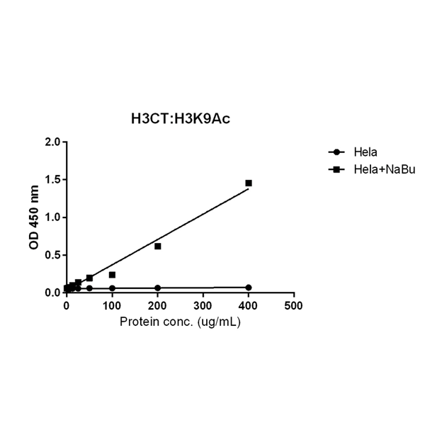 Figure 5. ELISA result showing specificity<br>Sandwich ELISA against acetylated histone H3 at Lys 9 using HeLa whole cell lysate, treated or untreated with Sodium Butyrate. Using anti-H3CT (RM188, 1 ug/mL) as the capture antibody and biotinylated anti-H3K9ac (RM161, 1 ug/mL) as the detection antibody.
