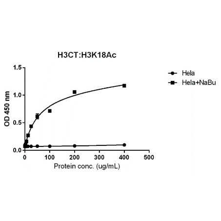 Figure 5. ELISA result showing specificity<br>Sandwich ELISA against acetylated histone H3 at Lys 18 using HeLa whole cell lysate, treated or untreated with Sodium Butyrate. Using anti-H3CT (RM188, 1 ug/mL) as the capture antibody and biotinylated anti-H3K18ac (RM166, 2 ug/mL) as the detection antibody.