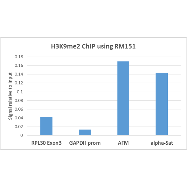 Figure 4. ChIP result<br>ChIP performed on HeLa cells using H3K9me2 antibody (RM151, 5ug). Real-time PCR was performed using primers specific to the gene indicated.