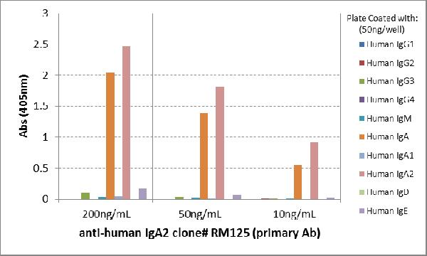Figure 4. ELISA result showing specificity<br>ELISA of human immunoglobulins shows RM125 only reacted to human IgA2. No cross reactivity with human IgA1, IgG, IgM, IgD, or IgE. The plate was coated with 50 ng/well of different immunoglobulins. 200 ng/mL, 50ng/mL, or 10 ng/mL of RM125 was used as the primary antibody. An alkaline phosphatase conjugated anti-rabbit IgG as the secondary antibody.