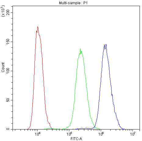 Figure 6. Flow Cytometry analysis of Hela cells using anti-PDE4D antibody (A01111-1). <br>Overlay histogram showing Hela cells stained with A01111-1 (Blue line).The cells were blocked with 10% normal goat serum. And then incubated with rabbit anti-PDE4D Antibody (A01111-1,1μg/1x10<sup>6</sup> cells) for 30 min at 20°C. DyLight®488 conjugated goat anti-rabbit IgG (BA1127, 5-10μg/1x10<sup>6</sup> cells) was used as secondary antibody for 30 minutes at 20°C. Isotype control antibody (Green line) was rabbit IgG (1μg/1x106) used under the same conditions. Unlabelled sample (Red line) was also used as a control.