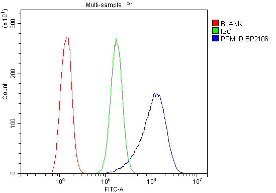 Figure 3. Flow Cytometry analysis of A431 cells using anti-PPM1D antibody (A01576-1). <br> Overlay histogram showing A431 cells stained with A01576-1 (Blue line).The cells were blocked with 10% normal goat serum. And then incubated with rabbit anti-PPM1D Antibody (A01576-1, 1μg/1x10<sup>6</sup> cells) for 30 min at 20°C. DyLight®488 conjugated goat anti-rabbit IgG (BA1127, 5-10μg/1x10<sup>6</sup> cells) was used as secondary antibody for 30 minutes at 20°C. Isotype control antibody (Green line) was rabbit IgG (1μg/1x10<sup>6</sup>) used under the same conditions. Unlabelled sample (Red line) was also used as a control.