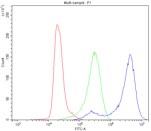 Figure 4. Flow Cytometry analysis of K562 cells using anti-CD2AP antibody (A01756-2). <br>Overlay histogram showing K562 cells stained with A01756-2 (Blue line).The cells were blocked with 10% normal goat serum. And then incubated with rabbit anti-CD2AP Antibody (A01756-2,1μg/1x10<sup>6</sup> cells) for 30 min at 20°C. DyLight®488 conjugated goat anti-rabbit IgG (BA1127, 5-10μg/1x10<sup>6</sup> cells) was used as secondary antibody for 30 minutes at 20°C. Isotype control antibody (Green line) was rabbit IgG (1μg/1x10<sup>6</sup>) used under the same conditions. Unlabelled sample (Red line) was also used as a control.