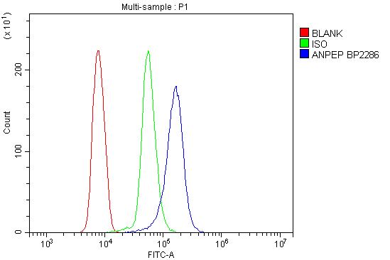 Figure 5. Flow Cytometry analysis of U937 cells using anti-ANPEP antibody (A02591-2). <br> Overlay histogram showing U937 cells stained with A02591-2 (Blue line).The cells were blocked with 10% normal goat serum. And then incubated with rabbit anti-ANPEP Antibody (A02591-2, 1μg/1x10<sup>6</sup> cells) for 30 min at 20°C. DyLight®488 conjugated goat anti-rabbit IgG (BA1127, 5-10μg/1x10<sup>6</sup> cells) was used as secondary antibody for 30 minutes at 20°C. Isotype control antibody (Green line) was rabbit IgG (1μg/1x10<sup>6</sup>) used under the same conditions. Unlabelled sample (Red line) was also used as a control.