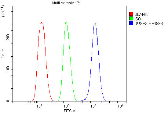 Figure 2. Flow Cytometry analysis of THP-1 cells using anti-DUSP3 antibody (A06135). <br> Overlay histogram showing THP-1 cells stained with A06135 (Blue line).The cells were blocked with 10% normal goat serum. And then incubated with rabbit anti-DUSP3 Antibody (A06135, 1μg/1x10<sup>6</sup> cells) for 30 min at 20°C. DyLight®488 conjugated goat anti-rabbit IgG (BA1127, 5-10μg/1x10<sup>6</sup> cells) was used as secondary antibody for 30 minutes at 20°C. Isotype control antibody (Green line) was rabbit IgG (1μg/1x10<sup>6</sup>) used under the same conditions. Unlabelled sample (Red line) was also used as a control.