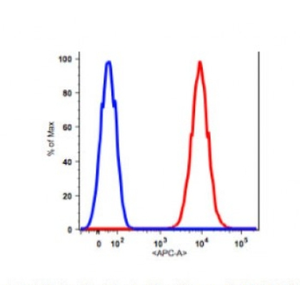 Anti-human CD90 Antibody APC Conjugated, Flow Validated