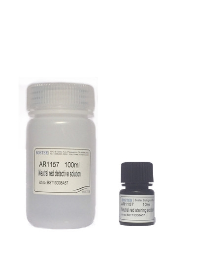 Neutral Red Cell Proliferation and Cytotoxicity Assay Kit