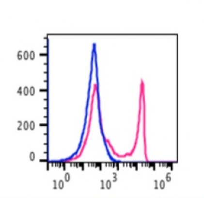 Lymphocytes gated PBMCs stained with biotin conjugated mouse anti-human CD8 (clone OKT8) followed by staining with SA-PE (red histogram). Lymphocytes gated PBMCs stained with isotype control mouse IgG2a biotin (clone RPC5.4) followed by SA-PE (blue histogram).
