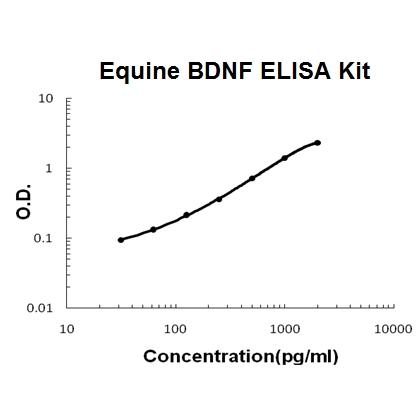 Horse equine BDNF PicoKine ELISA Kit standard curve