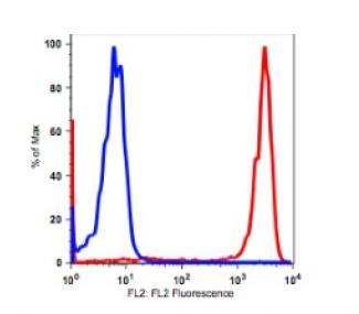 Anti-human CD14 Antibody PE Conjugated, Flow Validated