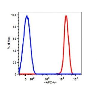 Anti-human CD45 Antibody APC Conjugated, Flow Validated