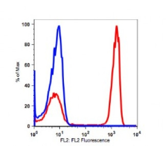 Anti-human CD4 Antibody PE Conjugated, Flow Validated