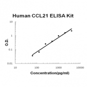 Human CCL21/6Ckine EZ-Set ELISA Kit standard curve