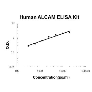Human ALCAM PicoKine ELISA Kit standard curve