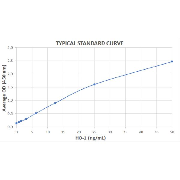 Typical Standard Curve for the HO-1 ELISA Kit (Enzyme-Linked Immunosorbent Assay)??K7112<br><strong>Assay Type:</strong> Sandwich ELISA. <br><strong>Detection Method:</strong> Colorimetric Assay. <br><strong>Assay Range:</strong> 0.781 ??50 ng/mL.