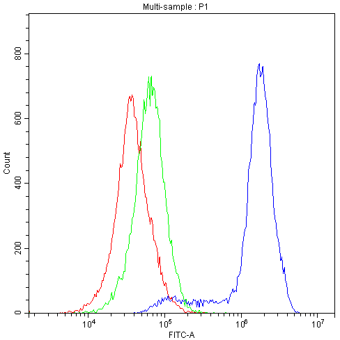 Figure 1. Flow Cytometry analysis of K562 cells using anti-Human CRM1 antibody (M01180-Dyl488). <br> Overlay histogram showing K562 cells stained with M01180-Dyl488 (Blue line).The cells were blocked with 10% normal goat serum. And then incubated with mouse anti-Human CRM1 Antibody (M01180-Dyl488,1μg/1x10<sup>6</sup> cells) for 30 min at 20°C.  Isotype control antibody (Green line) was mouse IgG (1μg/1x10<sup>6</sup>) used under the same conditions. Unlabelled sample (Red line) was also used as a control.