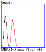 <h4>Figure 7. Flow Cytometry validation of GRIN1 using Anti-NMDAR1 GRIN1 Rabbit Monoclonal Antibody (M01808-1).</h4> Flow cytometric analysis of SH-SY5Y cells with NMDAR1 antibody at 1/50 dilution (red) compared with an unlabelled control (cells without incubation with primary antibody; black). Alexa Fluor 488-conjugated goat anti rabbit IgG was used as the secondary antibody.