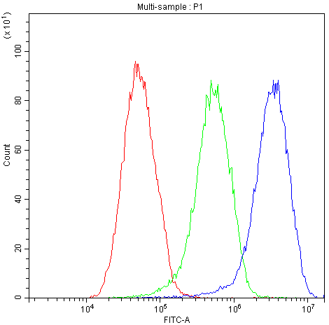 Figure 3. Flow Cytometry analysis of HEPG2 cells using anti-Factor I antibody (PB9935). <br>Overlay histogram showing HEPG2 cells stained with PB9935 (Blue line).The cells were blocked with 10% normal goat serum. And then incubated with rabbit anti-Factor I Antibody (PB9935,1μg/1x10<sup>6</sup> cells) for 30 min at 20°C. DyLight®488 conjugated goat anti-rabbit IgG (BA1127, 5-10μg/1x10<sup>6</sup> cells) was used as secondary antibody for 30 minutes at 20°C. Isotype control antibody (Green line) was rabbit IgG (1μg/1x10<sup>6</sup>) used under the same conditions. Unlabelled sample (Red line) was also used as a control.