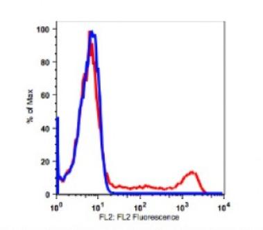 Anti-human CD8 Antibody PE Conjugated, Flow Validated