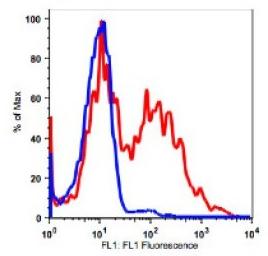 Anti-Human CD38 Antibody Unconjugated, Flow Validated