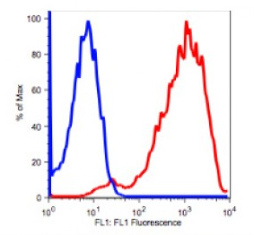 Anti-Human CD71 Antibody Unconjugated, Flow Validated