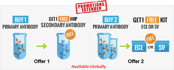 Buy Primary Antibody Get Secondary FREE