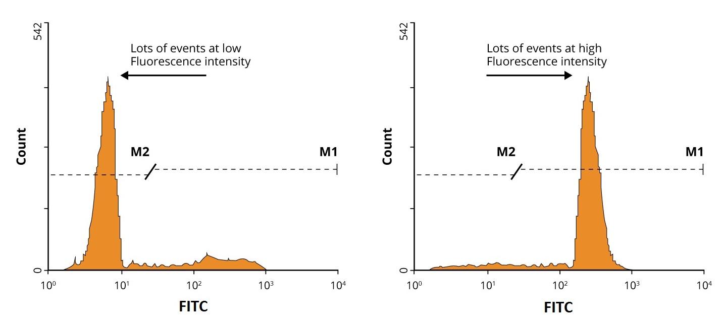 Flow Cytometry Histogram Plot