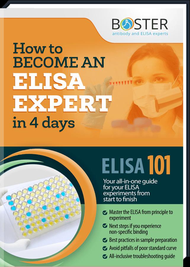 elisa-handbook-cover