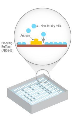 membrane blocking