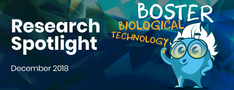 Research Spotlight – December 2018
