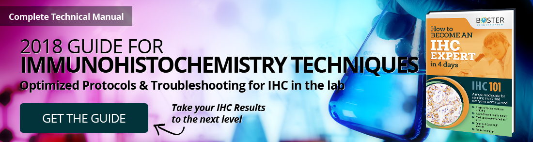 IHC protocols and troubleshooting guide handbook