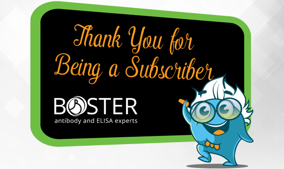 Thank You for Being a Subscriber